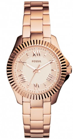 Fossil Cecile AM4611