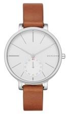 Skagen Steel SKW2434 watch